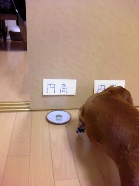今日の日本時間は円高?!